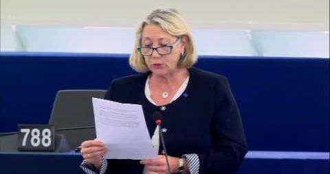 Joëlle Mélin intervient en séance plénière au Parlement européen Ralph Horvath