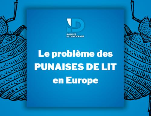 Le problème des punaises de lit en Europe !