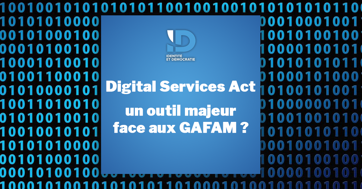 Digital Services Act page de code Ralph Horvath