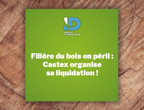 Filière du bois en péril : Castex organise sa liquidation !